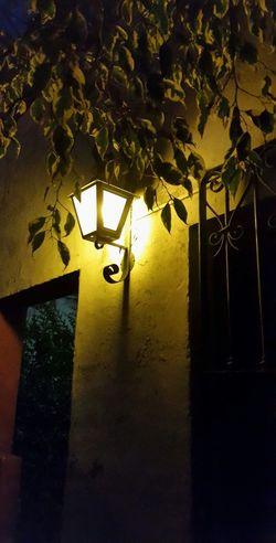 Night Luz Farola árbol Arteurbano Photooftheday Cute BeautifulArt