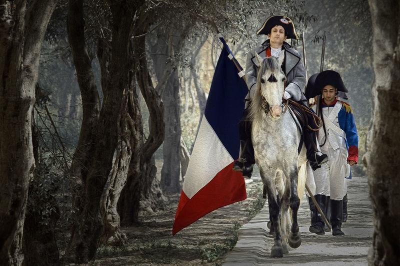 Napoleon Bonaparte Bonaparte France Napoleon Napoleon Bonaparte Adult Adults Only Day Domestic Animals French Horseback Horseback Riding Mammal Men Napoleonic One Animal One Man Only One Person Only Men Outdoors People Vive La France