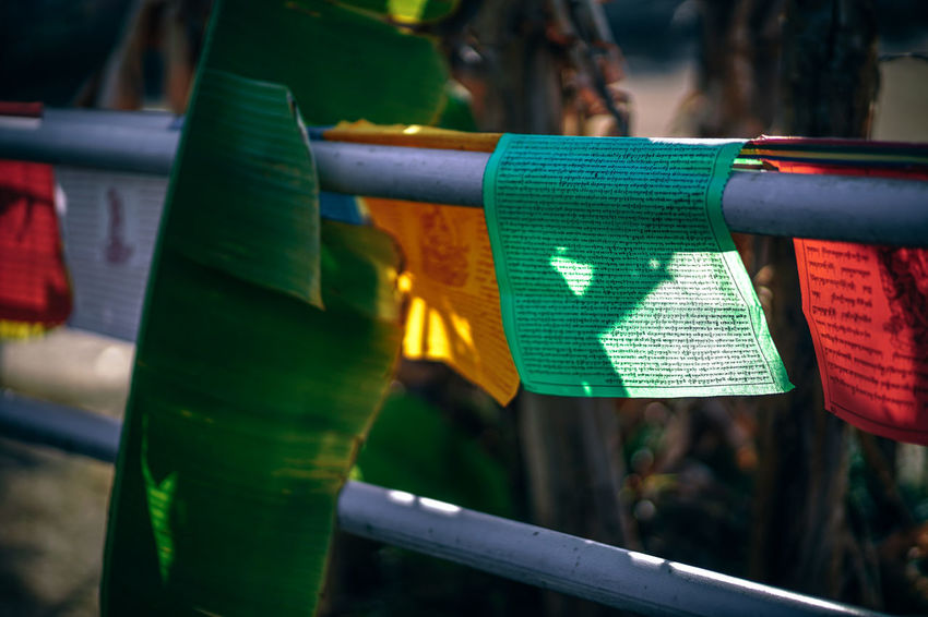 Religious Prayer Flags ASIA Asian  Buddha Buddhist Death God India Indian Monastery Pray Worship Worshippers Beauty Bless Blessing Buddhism Budhist Colourfuldessert Flag Flags Flags In The Wind  Himalaya Prayer Religious  Worshipper