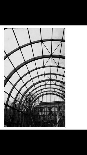 Bnw Blackandwhite Black & White Architecture Building Exterior Design Highbuilding Antwerpen Belgium Belgium. Belgique. Belgie. Belgien. Etc. Citycentre Highceilings EyeEm Best Shots