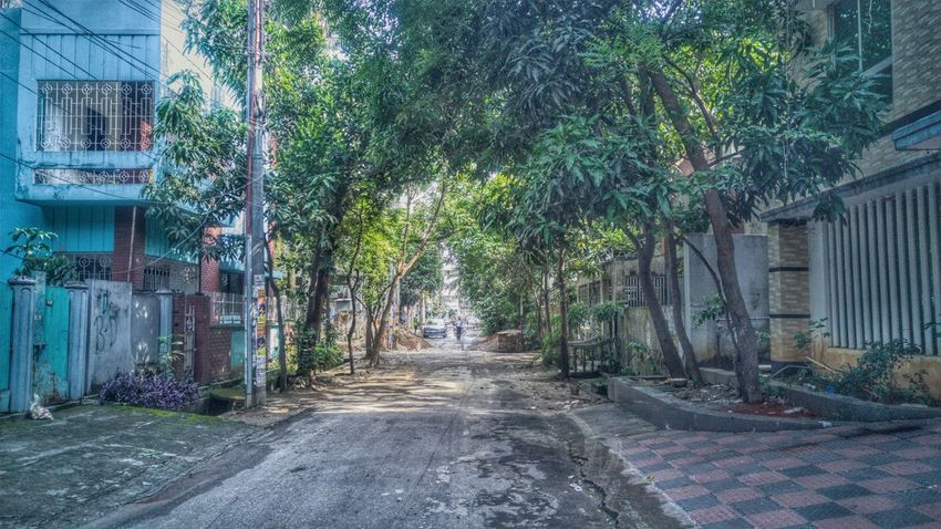 Tree The Way Forward Outdoors No People Day Architecture Nature Dhaka On Eyeem