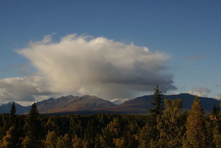 Alaska Beauty In Nature Cloud Cloud - Sky Denali National Park Landscape Mountain Mountain Range Nature Outdoors Parks Hwy Sky Tranquil Scene