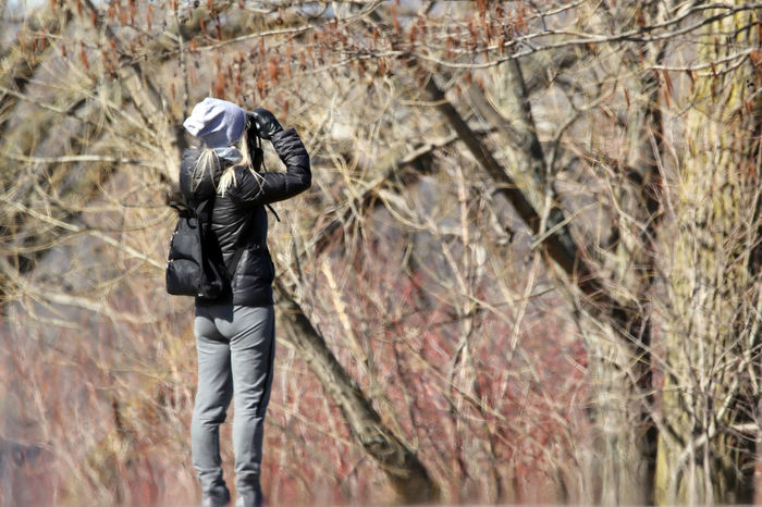 Bird Watcher Adventure Bare Tree Binoculars Bird Watcher Casual Clothing Day Forest Hiking Landscape Leisure Activity Lifestyles Nature Outdoors Rear View Standing Tranquility Tree