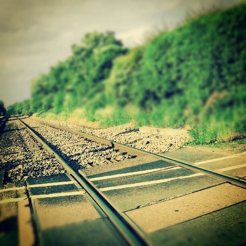 Trainline Traintracks Distance Android androidphotography androidinstagram galaxynexus instagram instamood instagramhub instagramers picoftheday photooftheday followfriday artdroid statigram all_shots gcs gio100