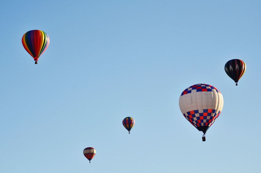 Colorful Blue Yellow Rainbow Primary Colors Green Blue Sky Hotairballoons Red Hotairballoon Balloons North Carolina