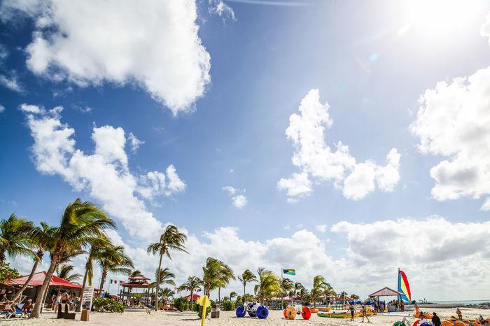 Beach Beach Fun Beautiful Beauty In Nature Cloud - Sky Clouds Clouds And Sky Fun Palm Tree Palm Trees Sand Sea Sun