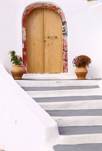 Potted plant on staircase of house