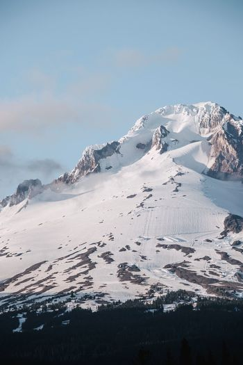 Up close and personal with Mt Hood. IG @noeldxng Oregon USA Slope Ice Snow Cold Temperature Sea Mountain Beach Winter Wave Adventure Water Ice Snowcapped Mountain Mountain Range Geology Rocky Mountains Physical Geography Rock Formation Natural Landmark Polar Climate Mountain Peak Rugged The Great Outdoors - 2018 EyeEm Awards The Great Outdoors - 2018 EyeEm Awards The Great Outdoors - 2018 EyeEm Awards