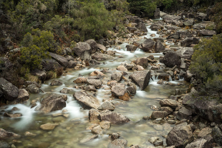 Ways Of Seeing National Park Portugal Rock Adventure Flowing Water Forest Landscape Long Exposure Motion Nature Outdoors Tree Water Waterfall