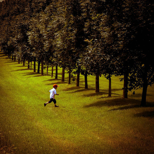 Beauty In Nature Boy In Red Cap Running Boy Playing Day English Countryside Field Garden Grass Grassy Green Color Growth Landscape Leisure Activity Lifestyles Little Boy Running In Countryside Nature Outdoors Park Park - Man Made Space Paula Puncher Small Boat Tree Summer Exploratorium