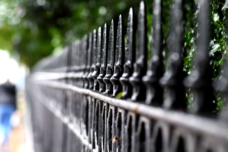 Edinburgh Railing Alloy Architecture Barrier Boundary Close-up Day Fence In A Row Metal Nature No People Outdoors Pattern Plant Protection Railing Railings Safety Security Selective Focus Side By Side Silver Colored Sunlight
