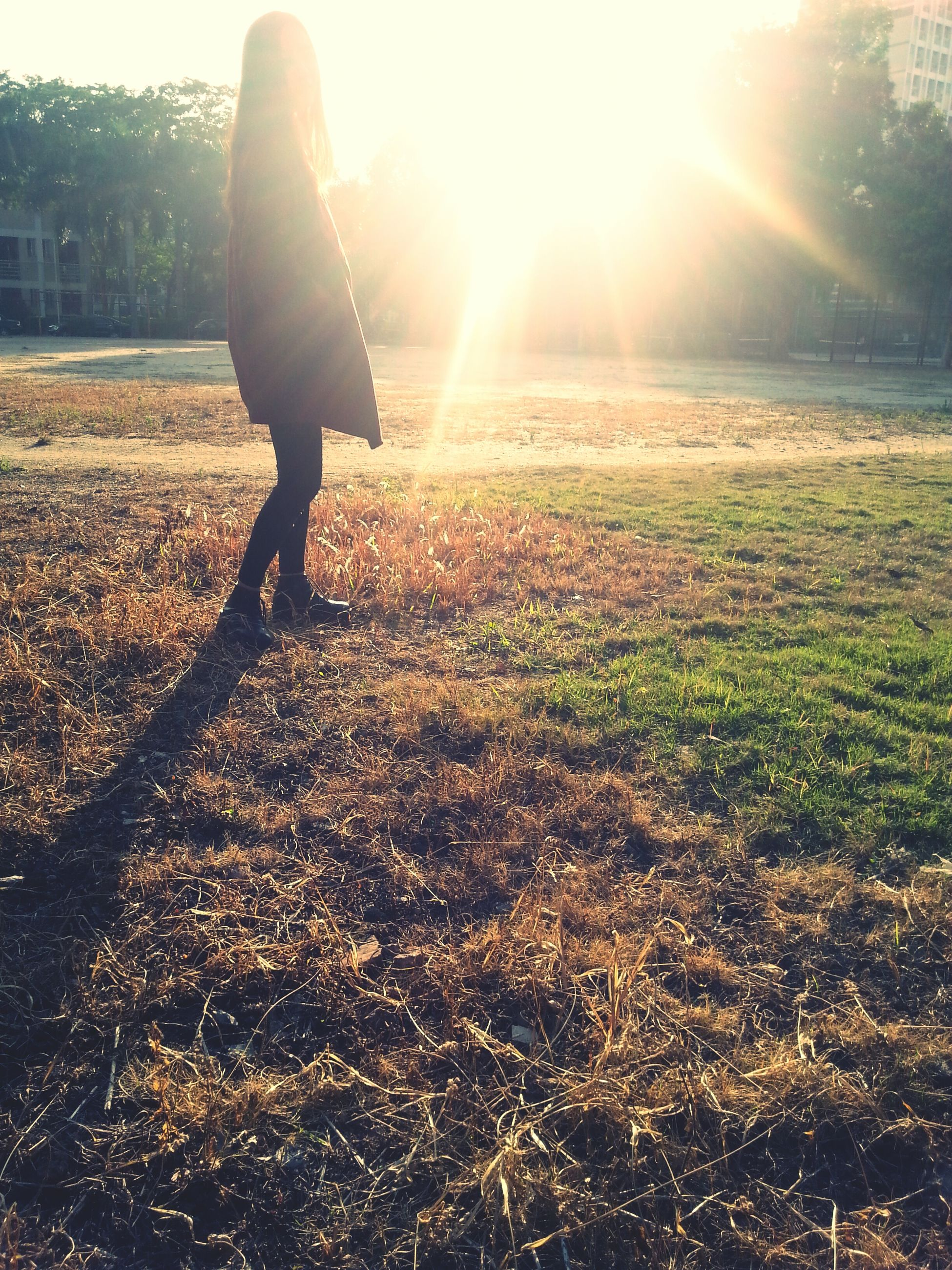 sun, lifestyles, sunlight, leisure activity, sunbeam, lens flare, walking, low section, men, standing, field, full length, rear view, sunny, person, shadow, casual clothing, grass