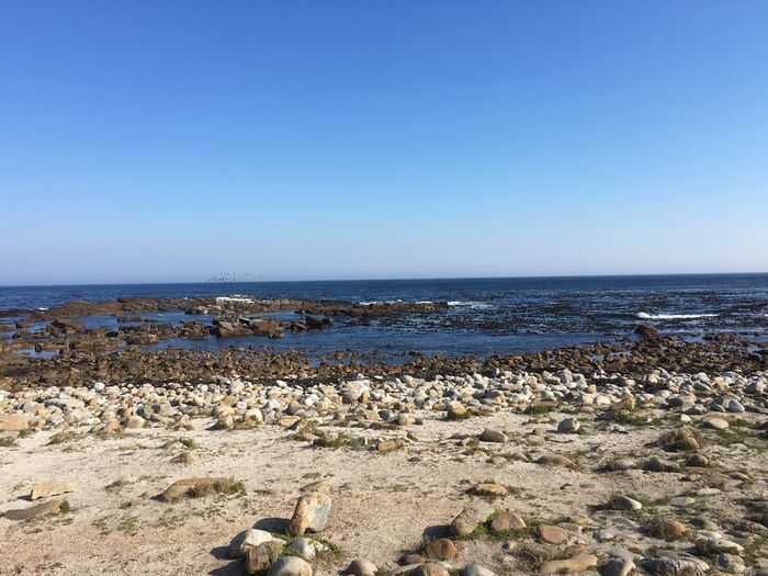 Sea Water Sky Horizon Horizon Over Water Land Beach Scenics - Nature Clear Sky Blue Nature Copy Space Day No People Rock Environment Beauty In Nature Rock - Object Tranquil Scene Outdoors Pollution Cape Of Good Hope