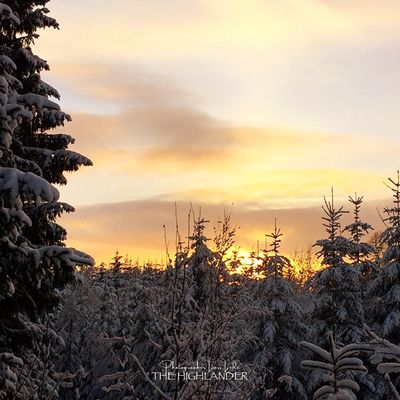 Sky Nature Sunset Beauty In Nature No People Tranquility Scenics Tree Outdoors Cloud - Sky Cold Temperature Winter Landscape