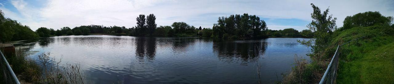 Tree Water Sky