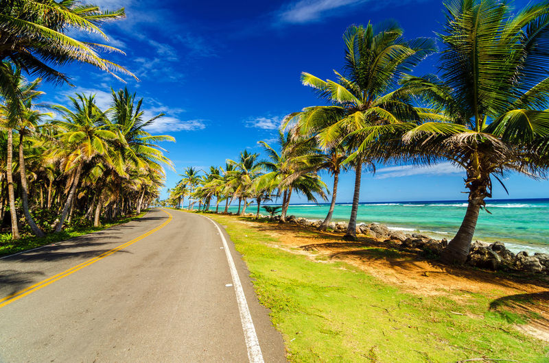 Empty highway amidst palm trees by caribbean sea