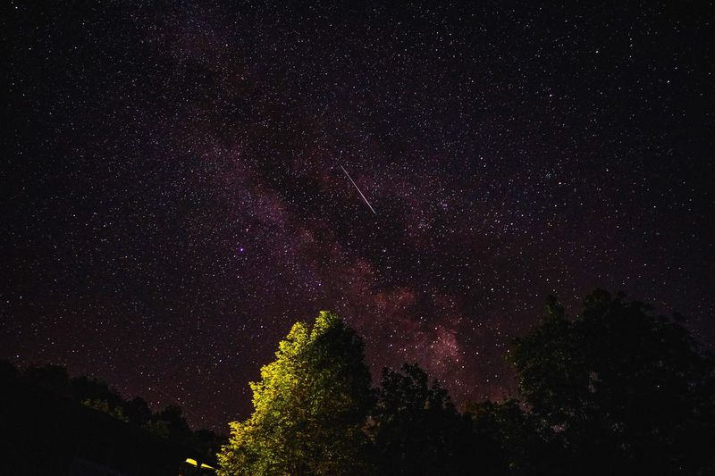 Night Beauty In Nature Star - Space Low Angle View Scenics Astronomy Tranquil Scene Tranquility Nature Sky Silhouette Outdoors No People Galaxy Starry Tree Constellation Space Shootingstar Meteor Shower Milkway