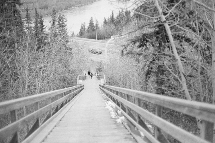 The Way Forward Tree Nature Walking Day Outdoors Real People Forest Two People Snow Cold Temperature Winter Beauty In Nature People Adult Film Canon AE-1 Caffenol Blackandwhite Photography Blackandwhite Black And White Black & White Analogue Photography 35mm Film Stairs