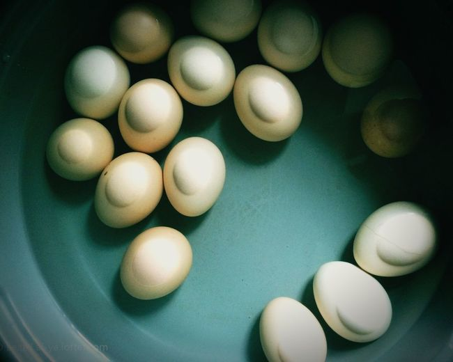 Close-Up Of Eggs In Boiling Water