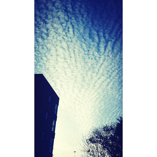 Amazing clouds this morning Skysultans Amazing Amazingly Clouds morningripplesinthesky