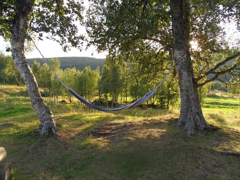 We want to relax and enjoy :) Autumn Day Hammock Landscape Nature No People Norway Norway Nature Outdoor Play Equipment Outdoors Relaxing Photos Silence Tree Background Photography