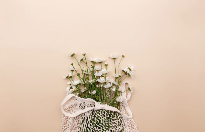 Eco friendly summer concept on beige background with eco shopping bag and white chamomile flowers