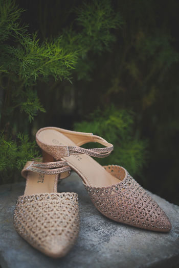 Close-up of shoes on plants