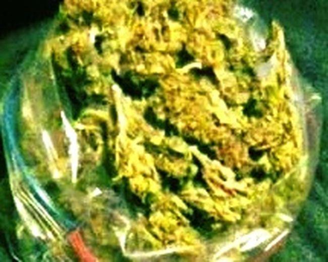 Ounce Blunts Yo!  Weed Pot Relaxing Enjoying Life Marijuana Nature Eyeem Flowers