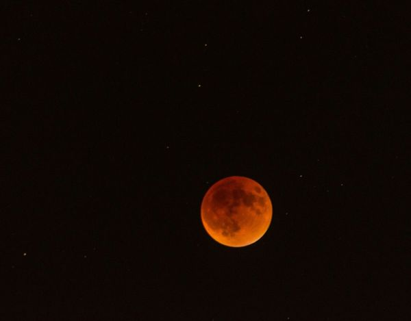 Super Blood Moon - I spent the evening on the Lake Natoma Crossing Bridge in Folsom with the family taking photos of the Super Blood Moon. To our pleasant surprise there were other photographers out on the bridge too. We had a good time witnessing this amazing celestial event. Supermoon Bloodmoon Eclipse Lunar Eclipse Luna Nightsky Moon Sky Skyporn Nightphotography