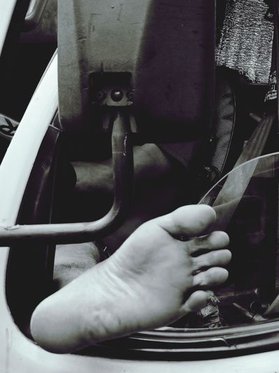 The Foot Feet