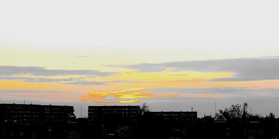 Good morning Sun ☀️ 💢 Project790301 💢 Zle_slowa_w_dobrej_duszy Nasirlnd Project790301 Dobryduch Umysł Mysl Mocduszy Mocserca Wemnie Wnas Poland 4her Polska Brain Blowmind City Tree Sunset Silhouette Multi Colored Sky Built Structure Office Building Residential Structure Settlement Tall - High Urban Skyline Building Exterior Residential District Building