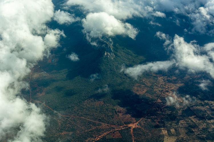 Aerial view of trees on land in kenya