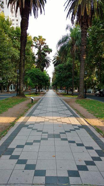 Bv Oroño RosarioCity Rosario, Santa Fe Rosario, Argentina Moorning! Moornig_time Moornig_capture