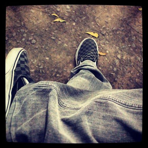 Vans Vansslipons Vanslover Vscocam Billabong Jeans Collegeofvocationalstudies Cvs2014 Reverie2014 Cvsfest Newdelhi Delhiuniversity Instapic Igers Instalovers Leaves Random Vscocam Likeforlike Instalike