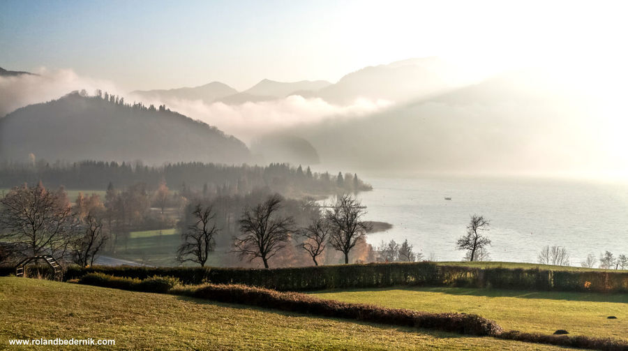Austria Beauty In Nature Cloud - Sky Day Eye4photography  EyeEm EyeEm Best Shots EyeEm Nature Lover Fog Foggy Lake Landscape Mist Mondsee Mountain Mountains Nature No People Outdoors Scenics Sky Storm Cloud Tree Trees