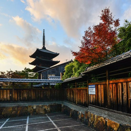 Autumn 🍂🍁🍂 Architecture Built Structure Building Exterior Temple Pagoda Sunset Sunset_collection Autumn Kyoto Yasaka-jinja Shrine Sky Place Of Worship Cloud - Sky Travel Destinations Spirituality Outdoors Tree Religion No People Day Japan Low Angle View