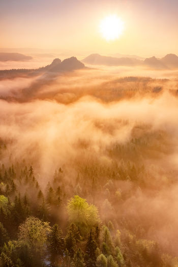 Misty morning in saxon switzerland national park. colorful spring sunrise. artistic post processed