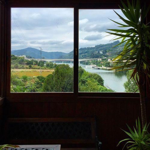Quadro em janela pintado Diogorochaphotography Photography Photo EyeEm Porto Portugal Windows Window Janela Rio Entreosrios