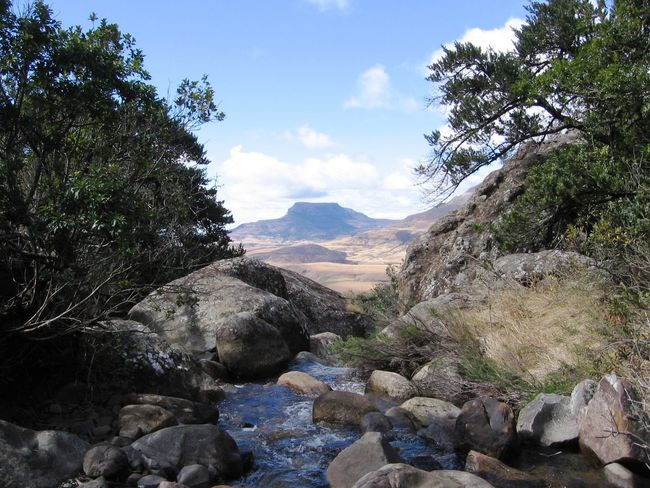 Beauty In Nature Cloud Cloud - Sky Idyllic Landscape Mountain Nature Outdoors Rock Formation Scenics Sky Taking Photos Tranquil Scene Tranquility Travel Photography Tree Water Drakensberg South Africa Landscapes With WhiteWall