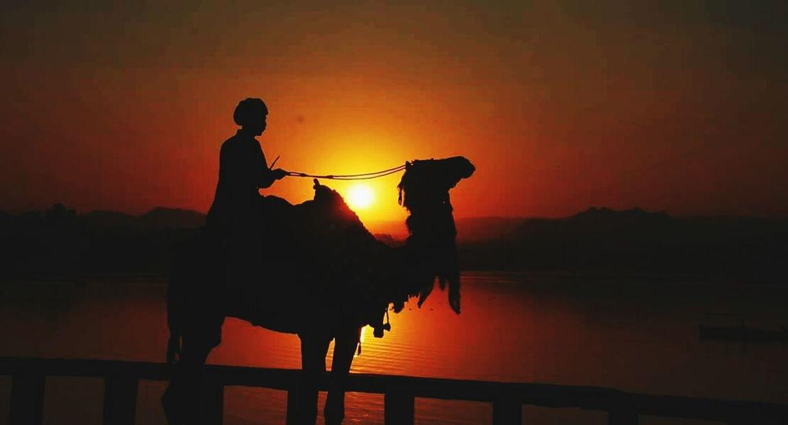 Myclick💚 Vijendrapaliwla Udaipur. India Udaipur