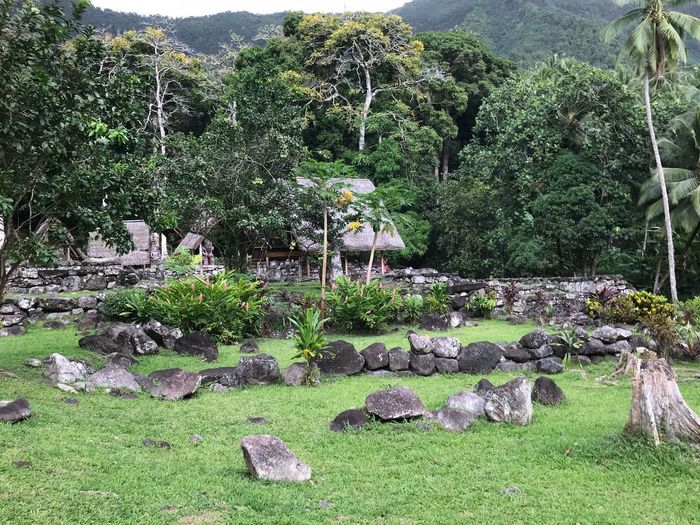 Paepae Hiva Oa Marquesas Islands Marquises Polynésie Française French Polynesia Paepae Marae Sacred Place Plant Green Color Day Growth Nature No People Tree Solid Rock Built Structure Rock - Object Architecture Tranquility