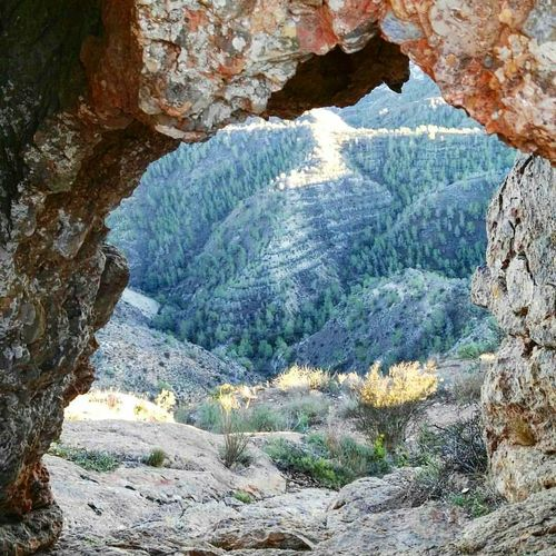 Nature Geology Beauty In Nature Rock - Object Day Outdoors No People Landscape Scenics Tree Sky Mountain View Mountain Murcia Cresta Del Gallo