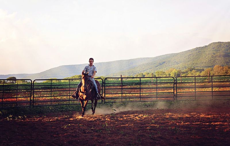 Young Man Riding On Horse At Ranch Against Clear Sky