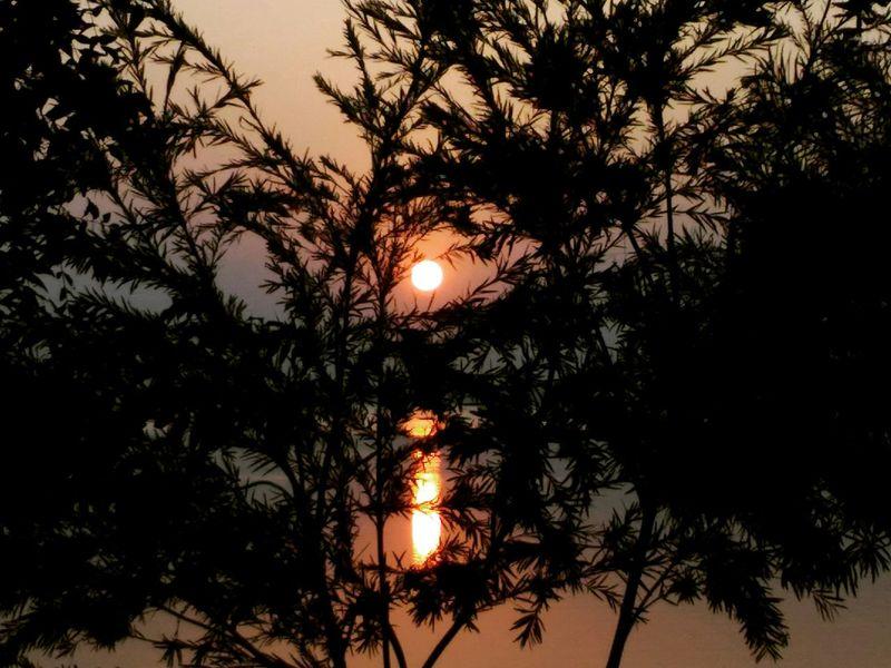 Cellphone Photography Cellphoneclicks Indiantourism Indore Sunset Lake Reflection Inthelapofnature Jalaj