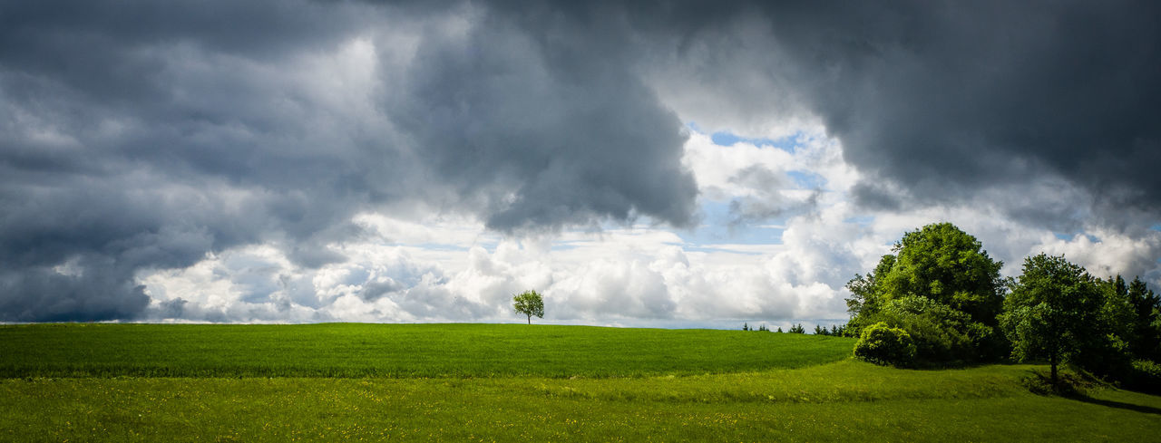 Beauty In Nature Cloud - Sky Clouds And Sky Day Field Golf Golf Course Grass Green - Golf Course Green Color Landscape Landscape_photography Landscapes Nature No People Outdoors Rural Scene Scenics Sky Storm Cloud Thunderstorm Tornado Tranquility Tree Perspectives On Nature Stay Out