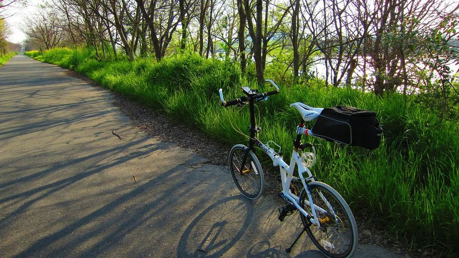 bicycle Bicycle In Nature Bicycle Path Byariver Perspective Osaka,Japan