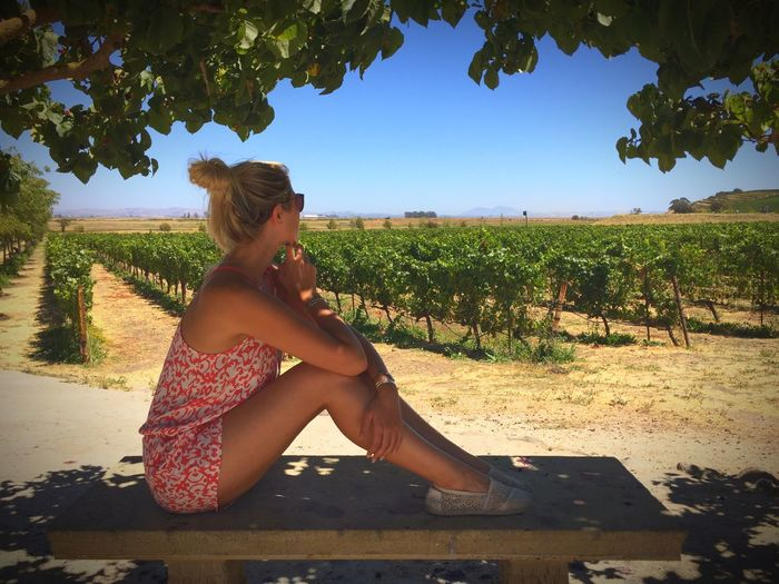 Side View Of Woman Sitting On Bench Against Vineyard During Sunny Day