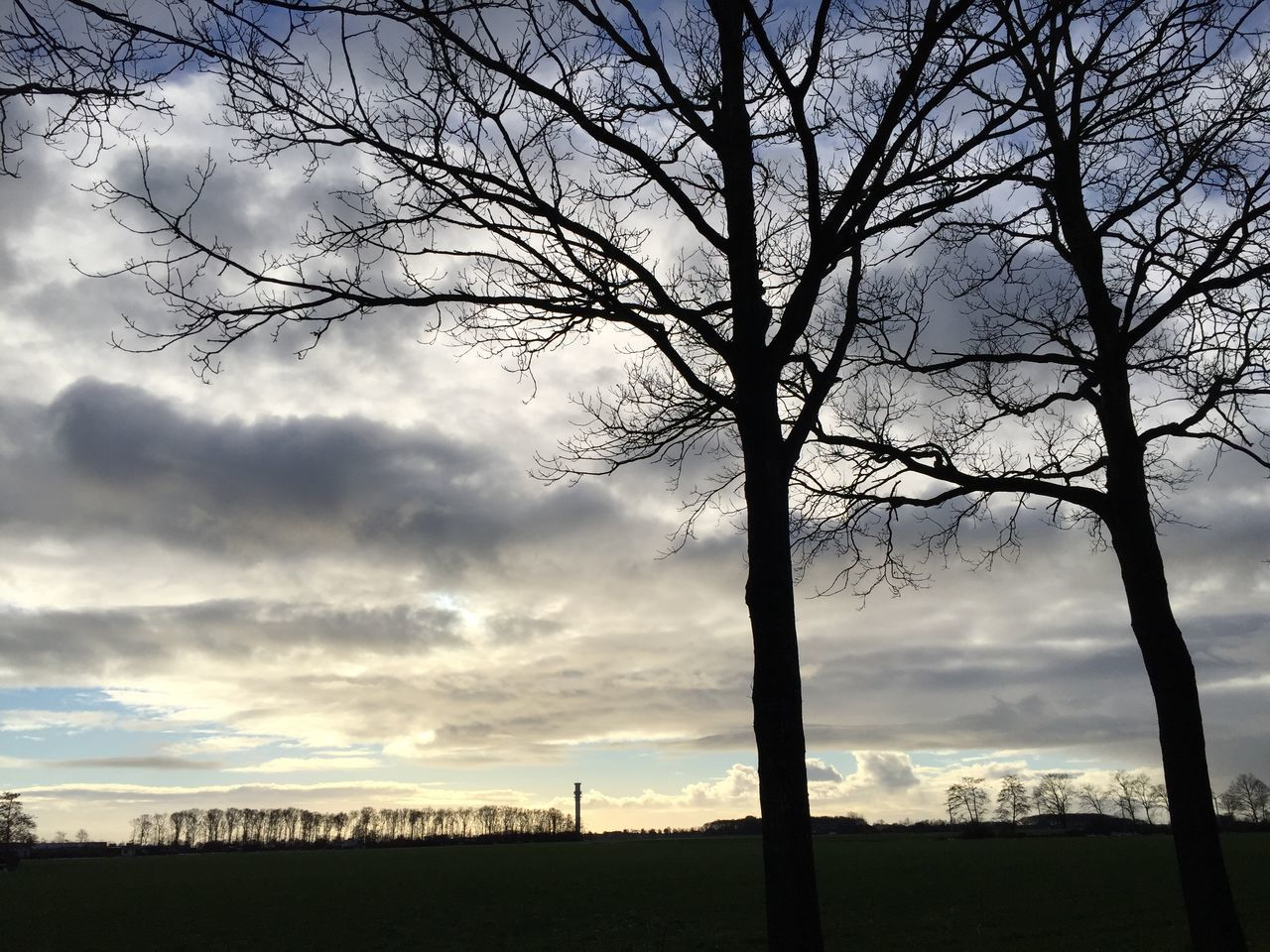 Silhouette Bare Trees On Field Against Cloudy Sky