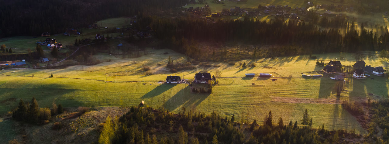 Highland houses casting shadows on a sunny morning Agriculture Beauty In Nature Day Field Flying High Growth High Angle View Landscape Nature No People Outdoors Rural Scene Scenics Tranquility Tree View From Above