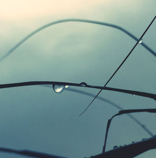 Low angle view of raindrops on glass
